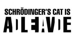 Gat de Schrödinger